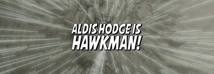 Aldis Hodge isHawkman